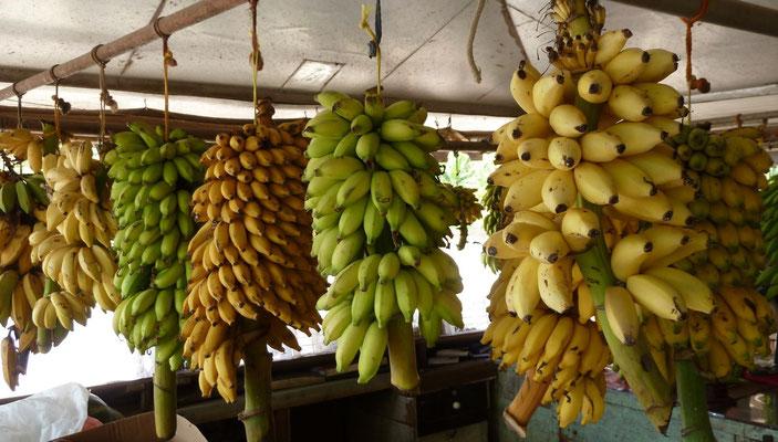 Verkaufsstand bei der Obstplantage
