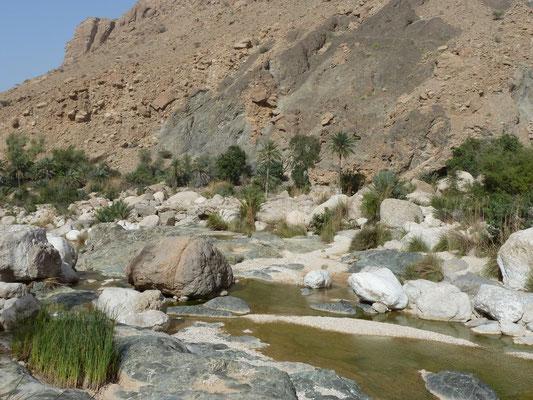 Und noch ein Wadi