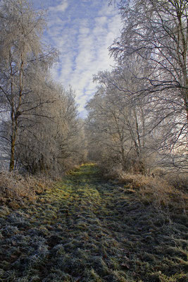 Winterwunnerland