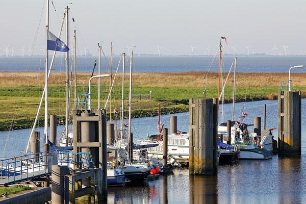 Kiekkaaste: Hafen Nieuwe Statenzijl