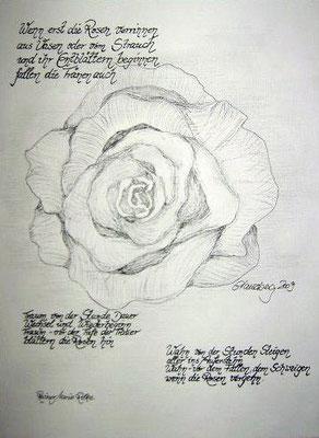 Rilkes Rose, 40*50 cm, Bleistift und Faserstift auf Karton, inkl. Passepartout, datiert, signiert, Unikat, 150 €