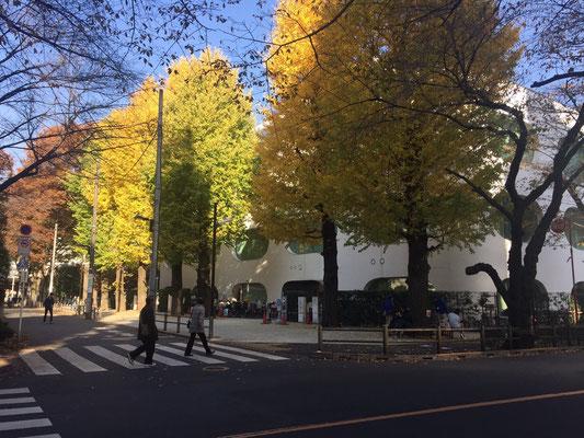 武蔵野プレイス紅葉の銀杏