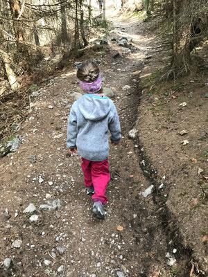 Weg zur Brunnsteinhütte