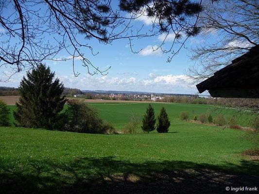 Blick auf Bad Waldsee