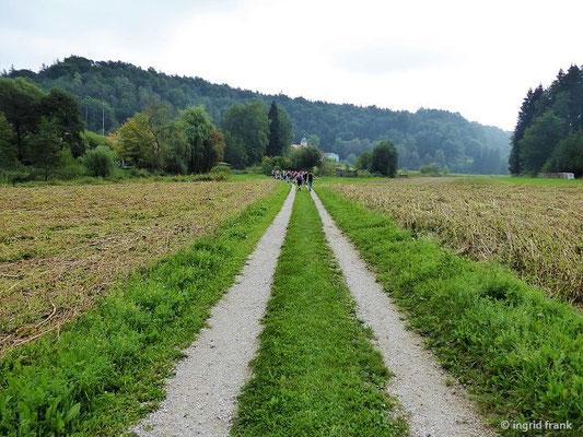 Im Schambachtal