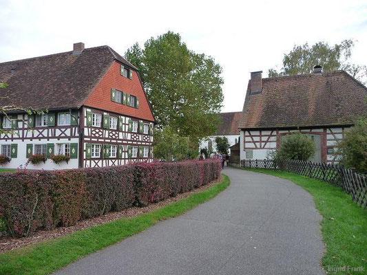 14.10.2012-Seefelden am Bodensee