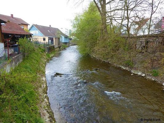 Die Wolfegger Ach in Baienfurt