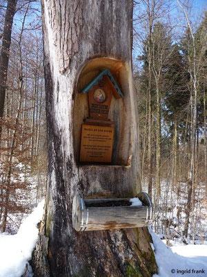 """""""Maria an der Eiche"""" am Tafelweiher"""