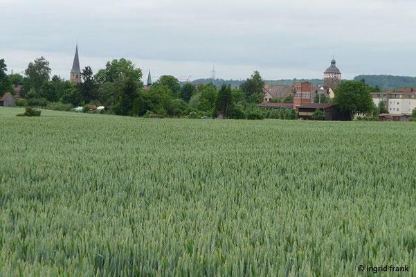 Blick auf Bönnigheim