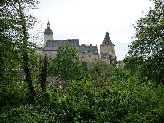 Blick vom Park zum Schloss