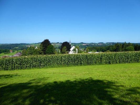 Zisterzienserinnen-Abtei Mariastern-Gwiggen