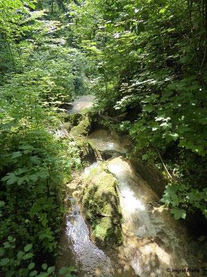 Mühlbachschlucht bei Tengen