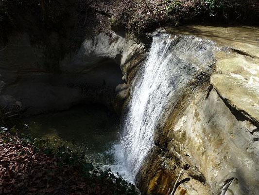 03.04.2011-Wasserfall im Schmalegger Tobel