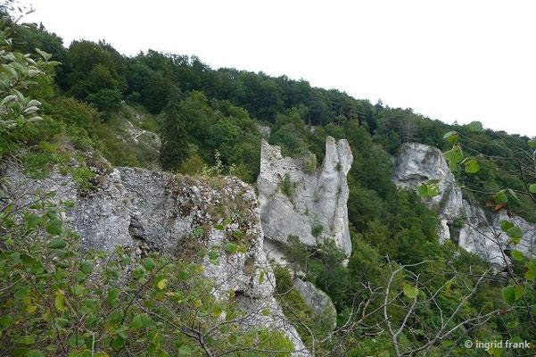 """Blick aufdie Ruine """"Gebrochen Gutenstein"""""""
