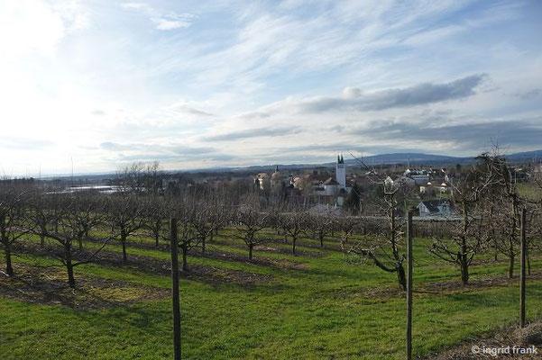 Blick von Osten auf Liebenau und Gehrenberg
