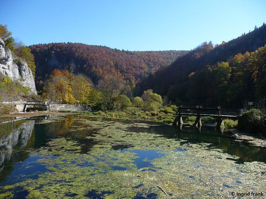 Neumühle: Blick donauabwärts