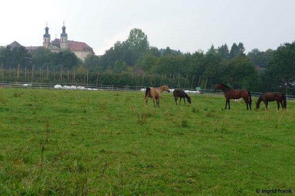 Bei Kloster Kellenried