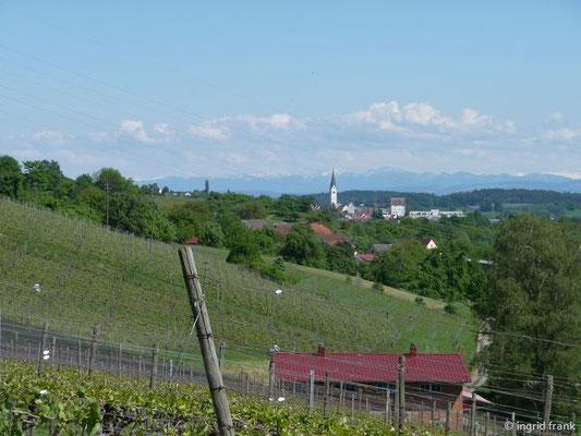 Blick auf Markdorf