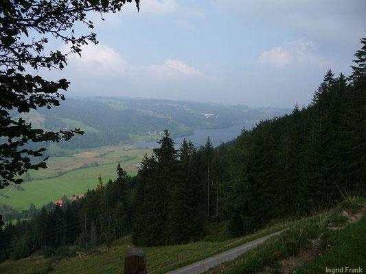 Blick auf den Großen Alpsee von der Nagelfluh-Seite aus