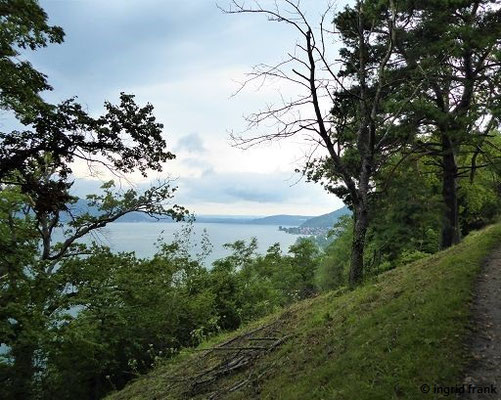 Blick zum westlichen Überlinger See