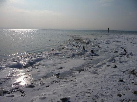 12.02.2012-Zwischen Immenstaad und Hagnau (Blick nach Westen)
