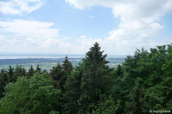 Die Aussicht vom Gehrenberg