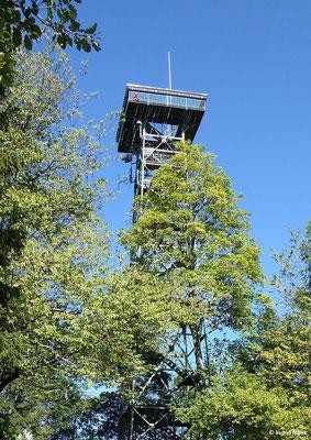 Der Gehrenbergturm