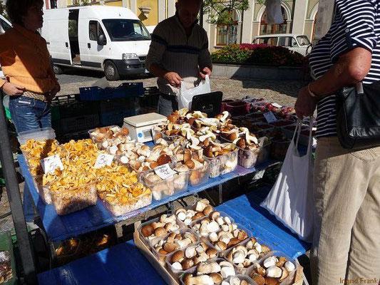 Steinpilze und Pfifferlinge aus Polen auf dem Hauptmarkt in Bautzen