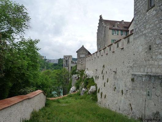 Schloss Lauffen am Rheinfall