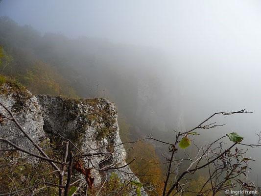 """Die Ruine """"Gebrochen Gutenstein"""" im Nebel"""