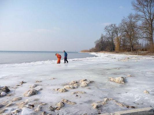12.02.2012-Zwischen Immenstaad und Hagnau