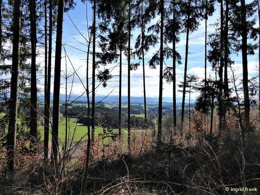 Über den Langrain mit großartiger Fernsicht zu den östlichen Alpen