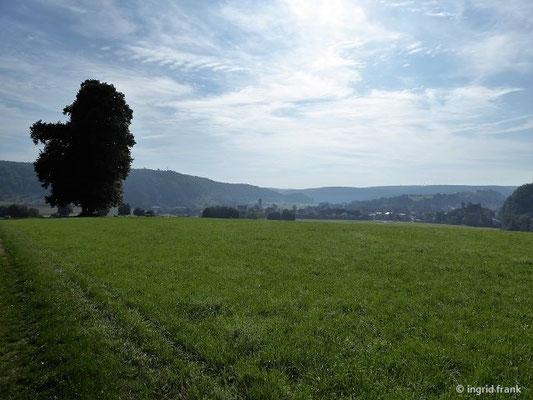 Blick zurück nach Dollnstein mit Altmühltal und Urdonautal