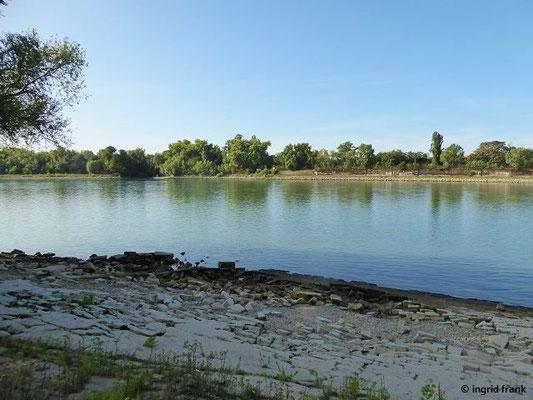 Strandbad Neckarau, Blick über den Rhein