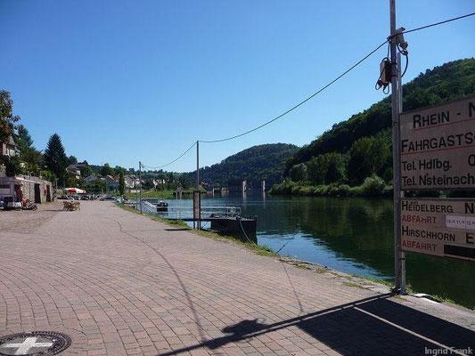 08.09.2012-Neckarsteinach, Blick neckaraufwärts