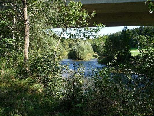 Die Argen unterhalb der Autobahnbrücke in der Nähe von Pfärrich