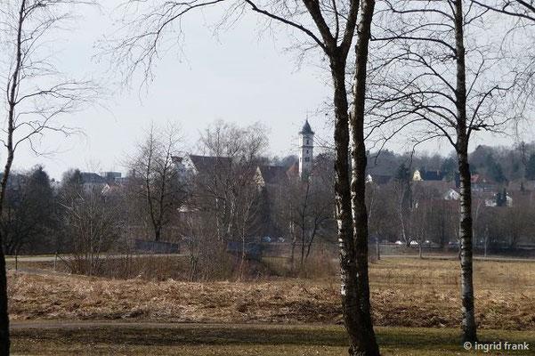 Blick auf Aulendorf vom Steegersee her