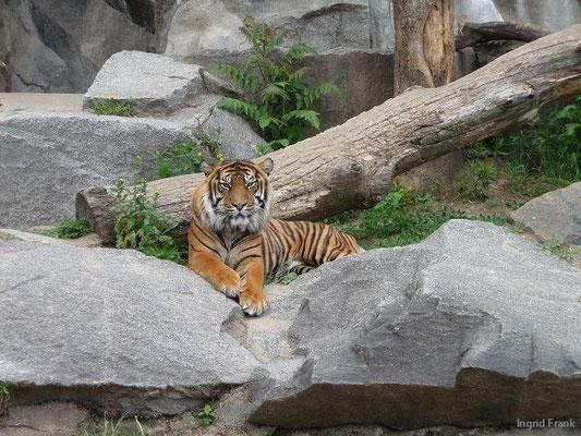 13.05.2011-Im Tierpark Berlin