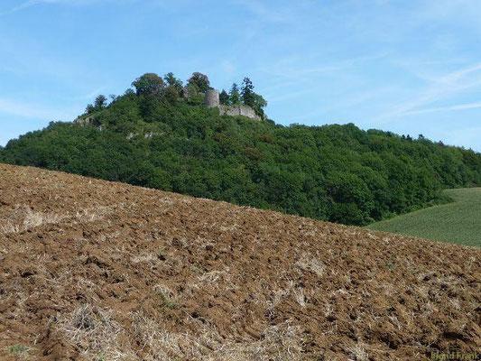 Blick auf die Ruine auf dem Mägdeberg von Westen