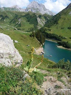 Blick auf Spuller See