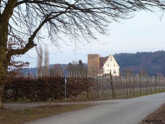 "Burg Gießen, auch ""Wasserschloss Gießen"" genannt"
