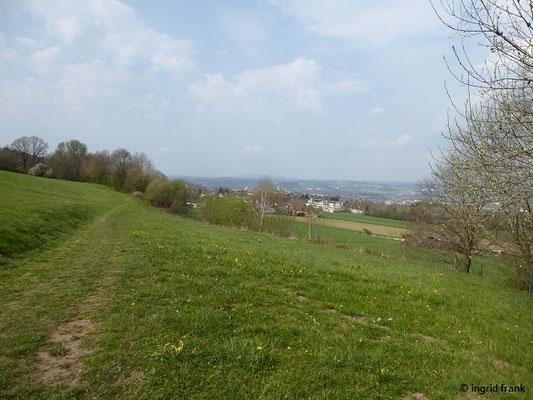 Blick zurück auf Weingarten