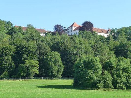 Schloss Zeil, von Unterzeil als gesehen