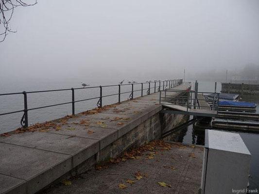 19.11.2009-Bregenz, Uferpromenade