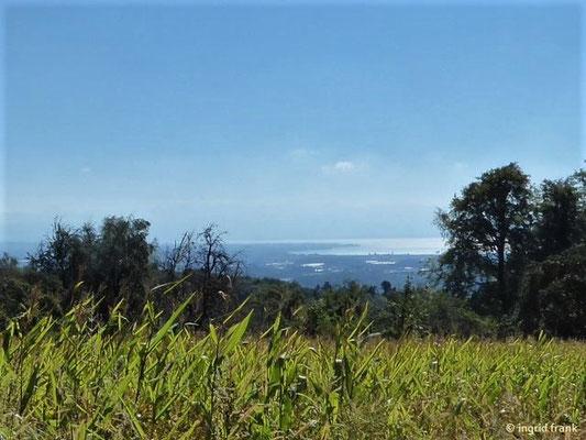 Blick vom Gehrenberg auf den Obersee