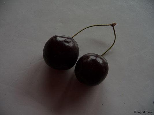 10.07.2014 - Süß-Kirsche, Vogel-Kirsche / Prunus avium   (Obst)