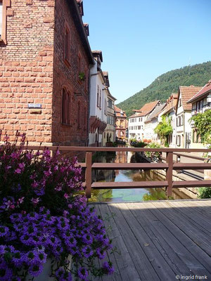 28.08.2016 - Annweiler am Trifels