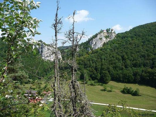 Blick ins Donauatal