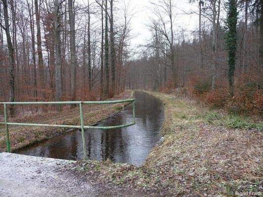 Am Kanal im Baienfurter Wald Richtung Ost