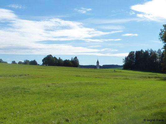 Blick vom Ried zur Stadtpfarrkirche Bad Wurzach